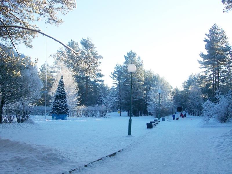 Путевки на зимние каникулы
